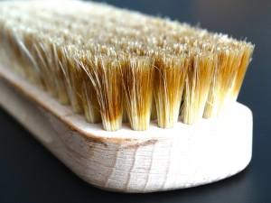 brush-629657_1920